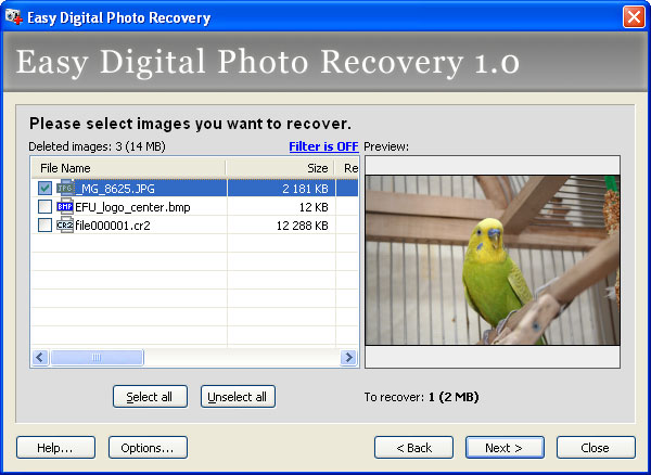Restore deleted photos!