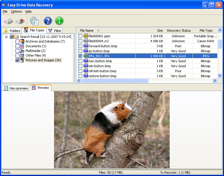 Easy Drive Data Recovery Screen shot