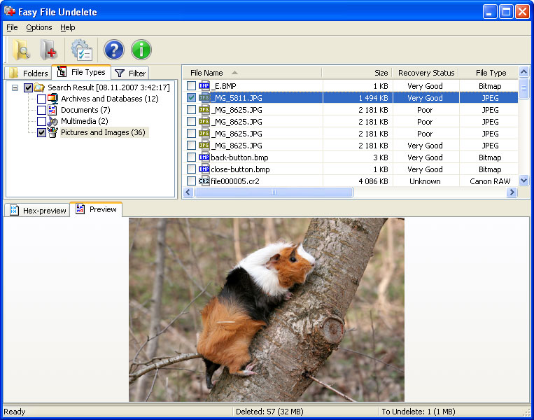 Click to view Easy NTFS File Undelete screenshots